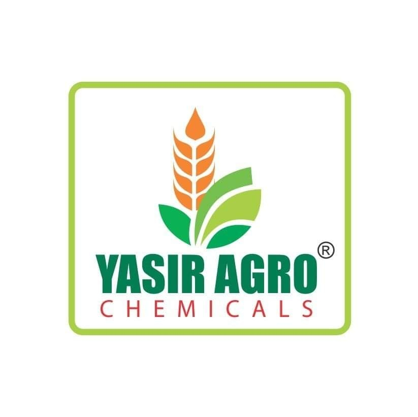 Yasir Wattoo